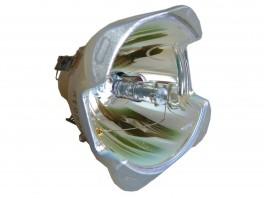 Original pære til 3D PERCEPTION SX30 Basic-20